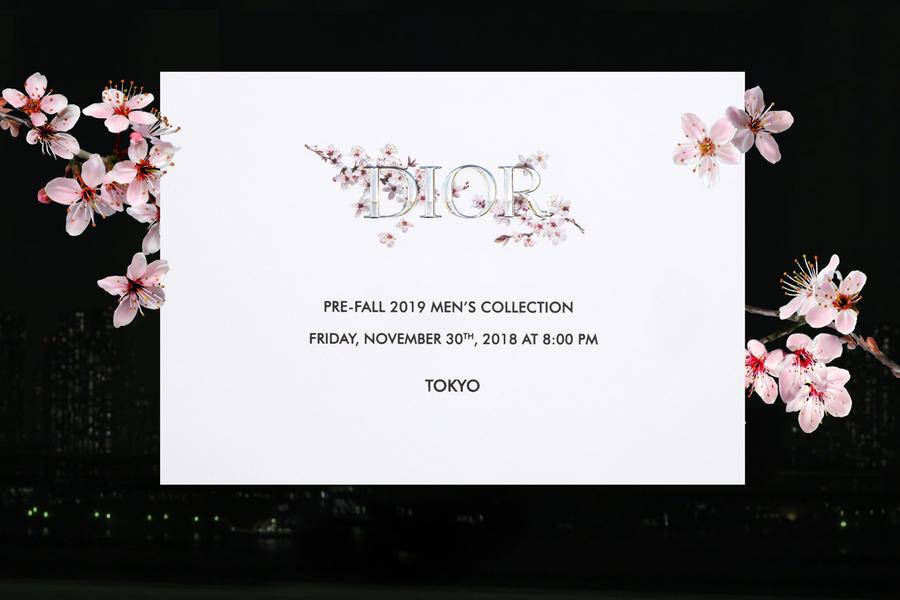 Dior Pre-Fall 2019 Men's Runway Show