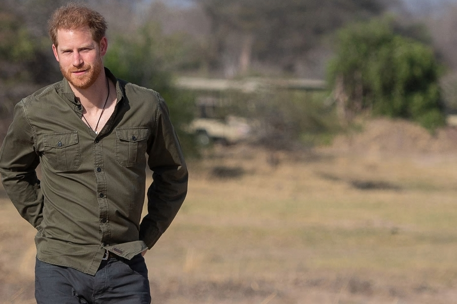 Prince Harry Has Thrown His Hat Into The Climate Change Ring