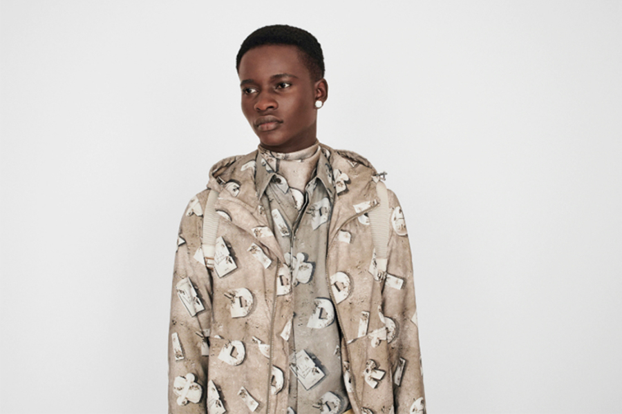 The DIOR And Daniel Arshman SS20 Capsule Has Finally Dropped