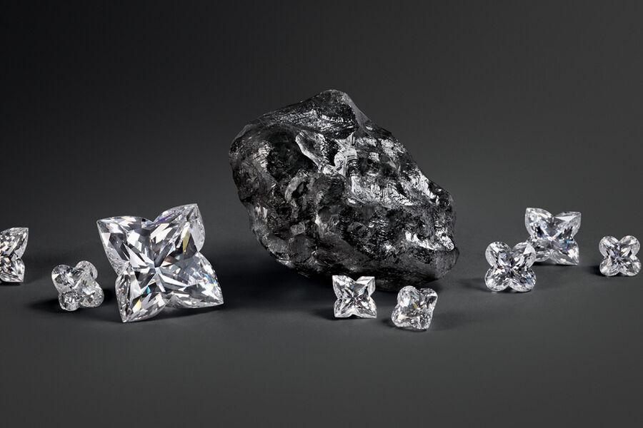Louis Vuitton Buys 'Huge' Sewelô Diamond