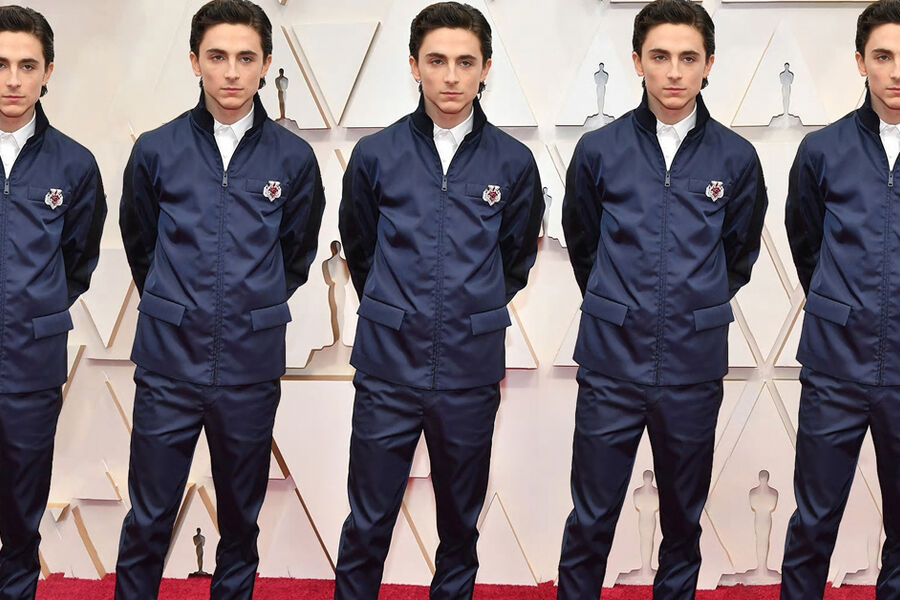 It's A Valet! It's A Mechanic! No, It's Timothée Chalamet At The 2020 Oscars
