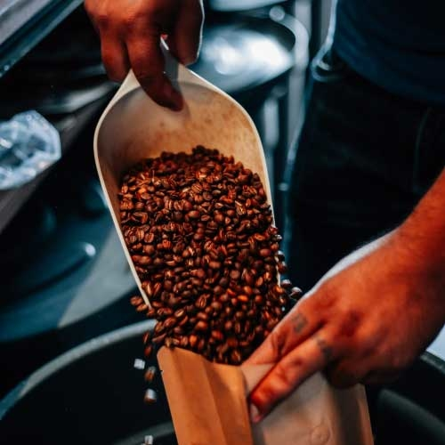 Nightjar coffee roasters