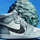 The Dior Air Jordan 1s Are Very Special Indeed